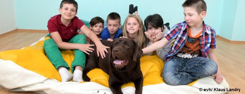 Kinder- und Jugenhilfe bei der EVH-Pfalz